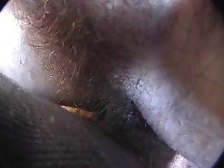 Pleine de poils