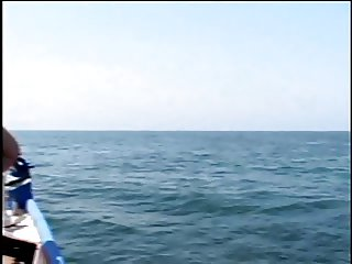 Whales fucking at sea